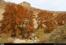 Hamedan, Iran - Autumn in Hamedan 10