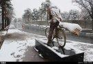 Iran, Kerman Winter Snow 00