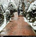 Iran, Tehran, Park, Winter snow 05